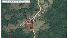 İnegöl Sülüklügöl ' de 4852 m² Satılık Tarla Yola Cephe