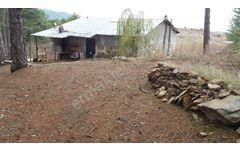 Bayramiç Beşik Köyünde 75 Dönüm 3+1 evi olan arazi Satılıktır
