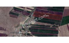BANKADAN SATILIK Diyarbakır Ergani 'de 132.452 m2 tarla