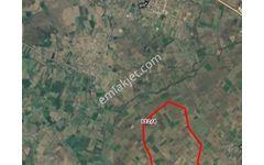 Çanakkale Biga Gemicikırı Köyünde 18170 Metrekare Satılık Sulu T