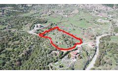 Kozlu Köyü'nde Satılık Tarla Vasfında Arsa