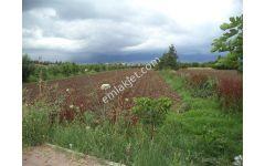 Bursa Yenişehir Afşar'da 4600m2 Yatırımlık Satılık Arazi 130000TL