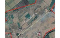 Çanakkale Biga Adliye Köyü 2 775 M2 Satılık Tarla