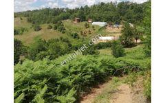 Çanakkale Merkez Bodurlar Köyünde 3 900M2 Satılık Tarla