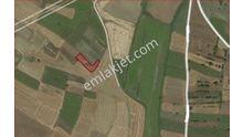 Silivri Çanta ve Fenerköy Acil Satılık Arsa Tarla Yatırım Bölgesi