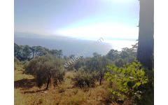Muğla Menteşe Kıran da ful deniz manzaralı 4150 m2 arazi satılık