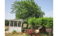 Zeren dn İsabeyli Dky Altı Sanayi İmarlı Arsa-Hobi bahçe