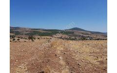 BABADERE MEVKİSİNDE 9500 M2 TARLA