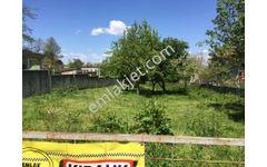 Sapanca Kurtköy mevkiinde 1000 m2 arsa kiralık