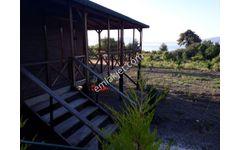 Burdur Yeşilova Salda gölünde 85 m2 ahşap ev