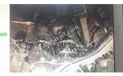 Karaman Karademir Emlaktan Medreselikte 5983 M2 Satılık Bahçe