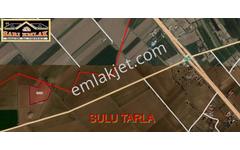 Satılık Tarla Aksaray Merkez Köyler Baymış Köyü 1512 --18,260 M