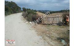 Çiftlik yapmına uygun köy cıvarı deniz manzrali yola cephe tarla