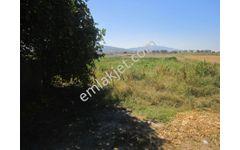Zeren Emlak'tan Yenipazar Alhan'da Eski Ev - Dam - Tarla...