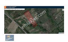 Yalova Çiftlikköy Satılık Tek Tapulu Tarla 8 840 m2