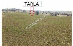 Isparta Yalvaç Çamharman Kabayel'de 9725 m2 Tarla