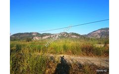 Ortaca Sarıgerme de satılık ana yola sıfır arazi