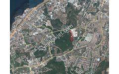 Urla Zeytinalanında Deniz Manzaralı 7 Villalık Arsa REZERVEden