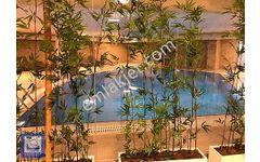 Bahçeşehir 1 Kısım Ümran Konakları Satılık 4+2 Lüks Daire