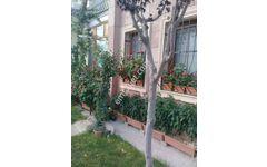 Fiyat düştü Nevşehir Ürgüp Toki evlerinde 2+1 Giriş kat