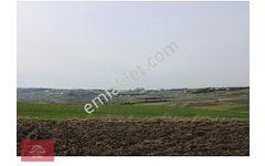 SİLİVRİ FENERKÖY DE YATIRIMLIK HİSSELİ 208 m2 24 000 TL KELEPİR