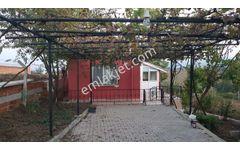 Satılık Müstakil Ev Yalova Altınova Ahmediye Köyü 2675 M2