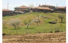 manisa kula çiftçi ibrahim mahallesinde 2 ev 2 dam 6 dönüm tarl