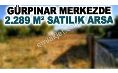 GÜRPINAR MERKEZDE 2.289 M² SATILIK ARSA