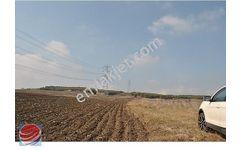 Silivri Büyükkılıçlı da Köy e Yakın 4 750 M2 Arazi