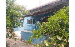 satılık 1800m2 bahçeli müstakil ev
