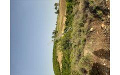 Manavgat Bucakşıhlarda Sera Çiftlik Arazisi