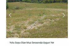 Muz Serasında Uygun Kadostro Yolu Suyu Olan Arazi