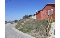 Yiğitlerde asfalta cephe ACİL SATILIK Ev-Dam ve meyve bahçesi