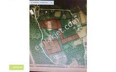 Eyüpsultan Kemerburgaz Mithatpaşada 28 400 m2 4 Parsel Tarla