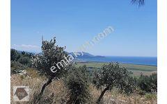 Atasoy Emlak  039 tan  Muhteşem Köyceğiz Gölü Manzaralı Arazi