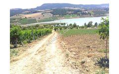 Geyve Akdoğan baraj gölü süper arazi