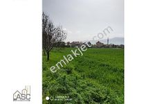 SANDALLAR MAHALLESİNDE 3 TARAFI YOL CEPHELİ 504 m2 İMARLI ARSA