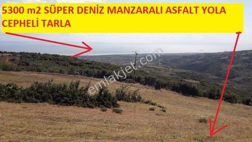 HAYDAR EMLAKTAN MÜREFTEDE  5300 M2 ASFALT YOLA CEPHE DENİZ MANZ