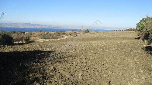 Lapseki Suluca'da 4.614 m2 Satılık Yatırımlık Arazi