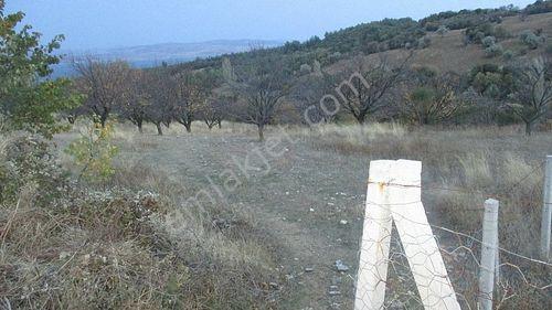 Lapseki Gökköy'de Satılık Yatırımlık 7.636 m2 Arazi