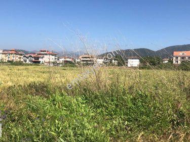 Muğla Dalaman da Satılık Okul Arsası Ref KoduDMA652