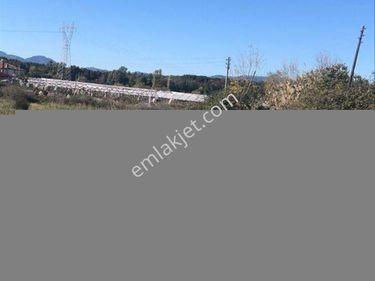 Dalaman Çevre Yoluna Cephe Satılık Kupon Arazi Ref Kodu DMA714