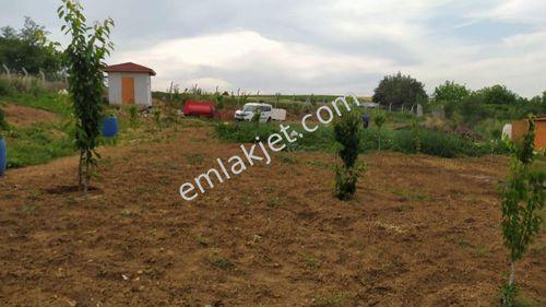 Edirne Merkeze 10 dk hobi bahçesi