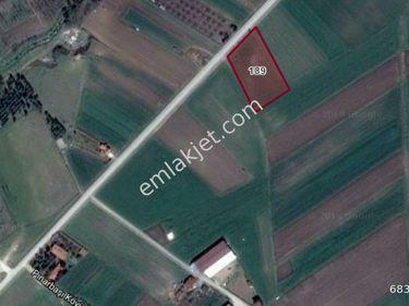 Tekirdağ Ergene Pınarbaşı Anayola 50 mt Cepheli 4260m2 Arazi