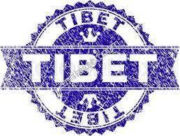 tibetden sakarya geyve camlık 5.100m2 satılık