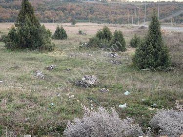 DİLOVASI'NDA 1.750M² SATILIK TİCARİ İMARLI ARSA BURADA