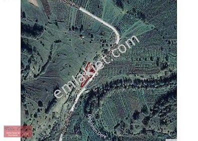 Şile Ağva Asfaltına Cephe %5 imarlı Fırsat
