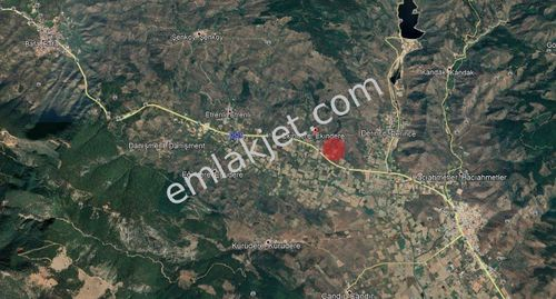 MİLAS EKİNDERE'DE SATILIK ZEYTİNLİ TARLA, 3700 METREKARE