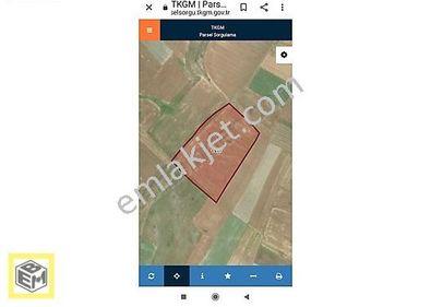 M.Kemalpaşa Lojistik planda 20300m2 değerli arazi