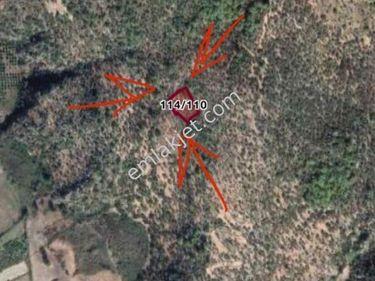 Dalaman Kapukargında 1996M2 Satılık Tarla Refkodugdk731